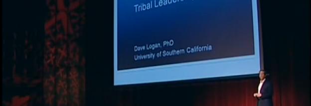 Le leadership Tribal